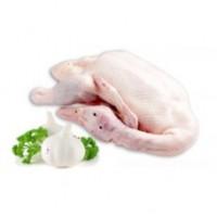 Whole Duck Fresh